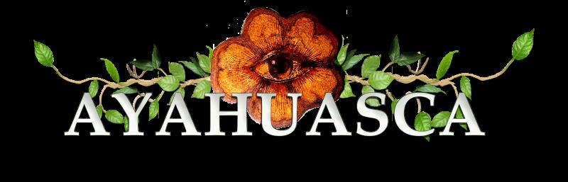 ayahuasca info