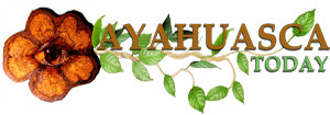 Ayahuasca Today