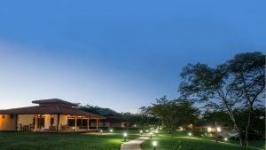 healing ayahuasca resort