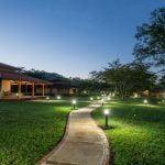 dmt ayahuasca retreat shaman healing